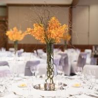 2017 ATFA Gala Dinner and Annual Awards_Intercontinental Sydney_Web-6604